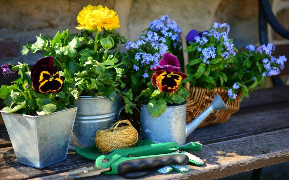 le top 10 des outils pour jardiner chez soi le parisien. Black Bedroom Furniture Sets. Home Design Ideas
